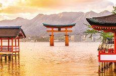 Följ med på drömresa till Japan