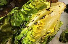 Grillad sallad med olivolja