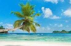 Seychellerna - en guide till paradiset
