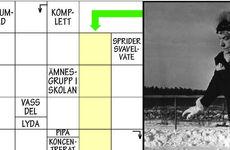 Formulär/tävlingssvar Bildkrysset nr 6