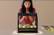 TV: Kolla in Ikeas hypermoderna inomhusträdgårdar