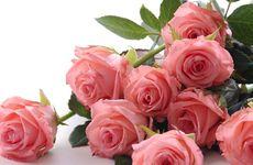 Det här betyder rosornas färg och antal